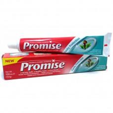 Promise Anti Cavity 170gm Toothpaste
